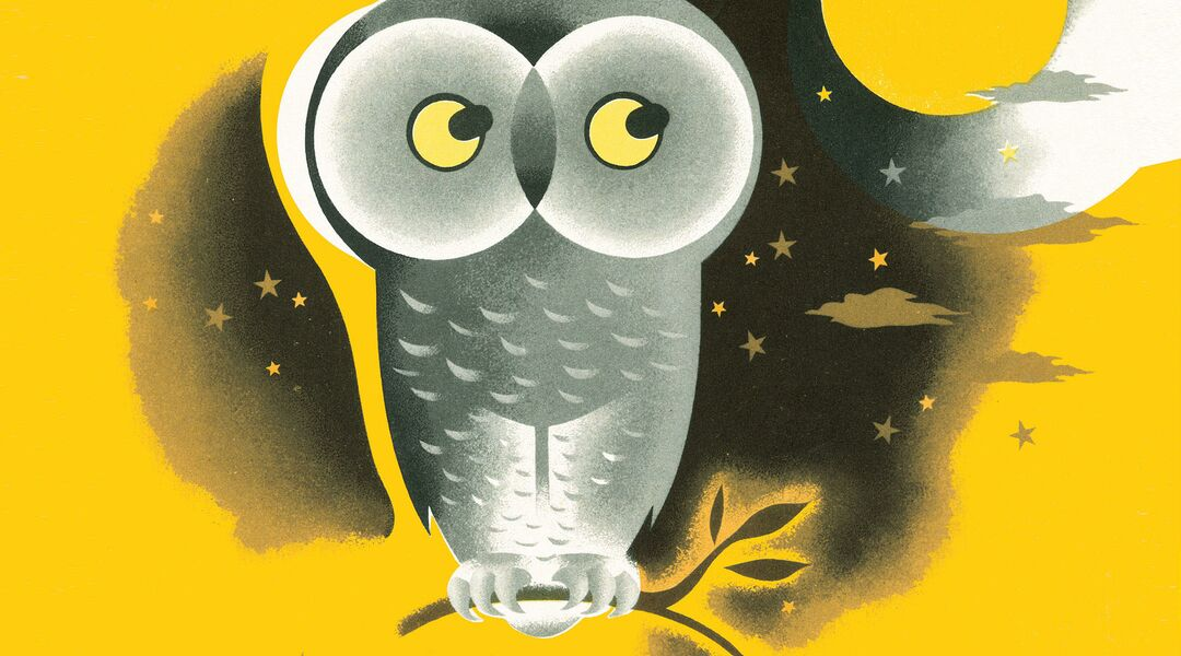 illustrated night owl sitting on tree branch