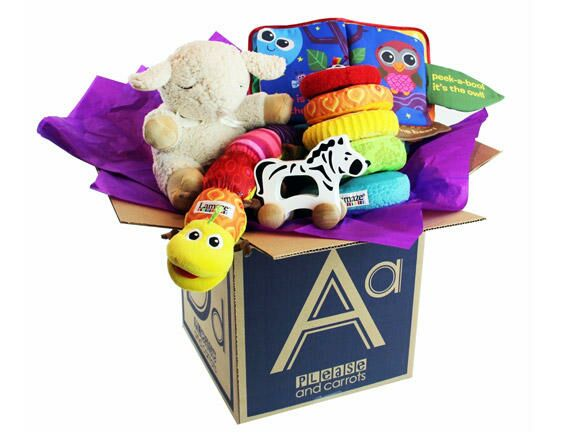please-and-carrots-subscription-box-580x435