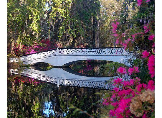 Kellie parker and wesley sellers 39 s wedding website for Magnolia gardens charleston sc