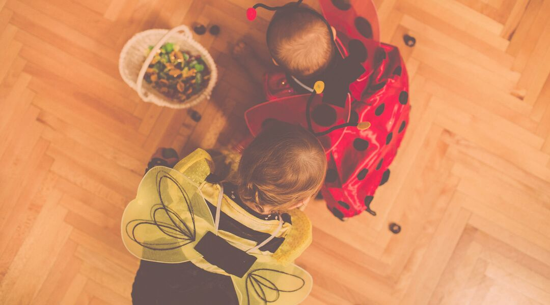 baby halloween costumes, ladybug and bee