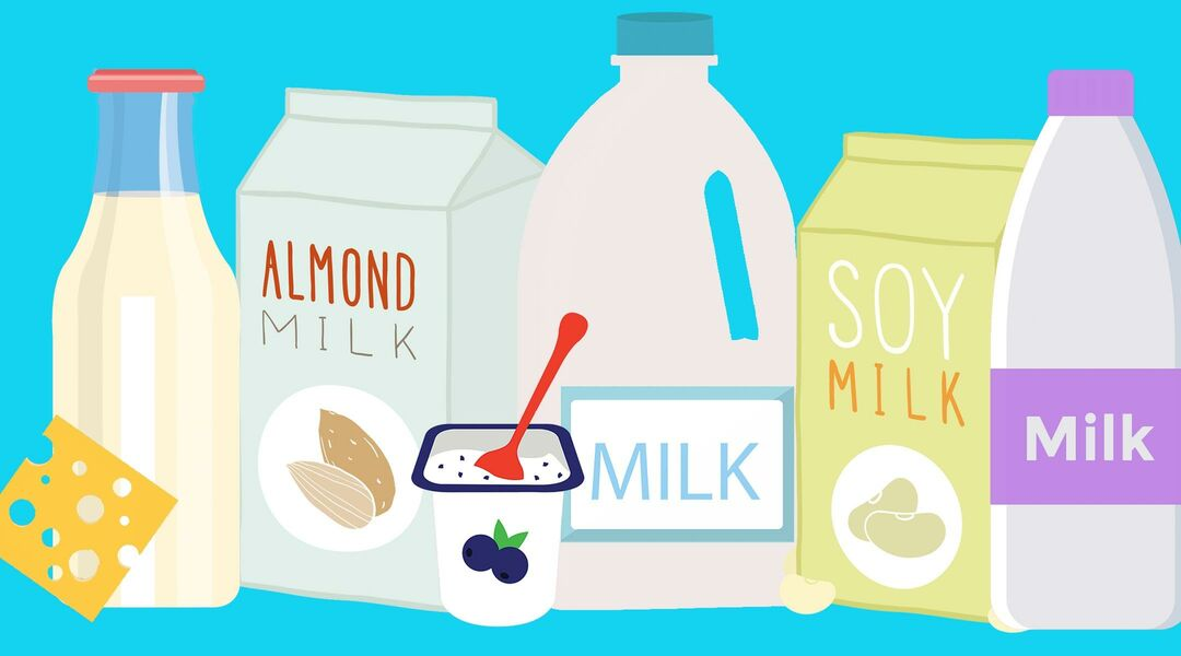 All Different Kinds Of Protein For Toddlers Including Cows Milk Soy Almond