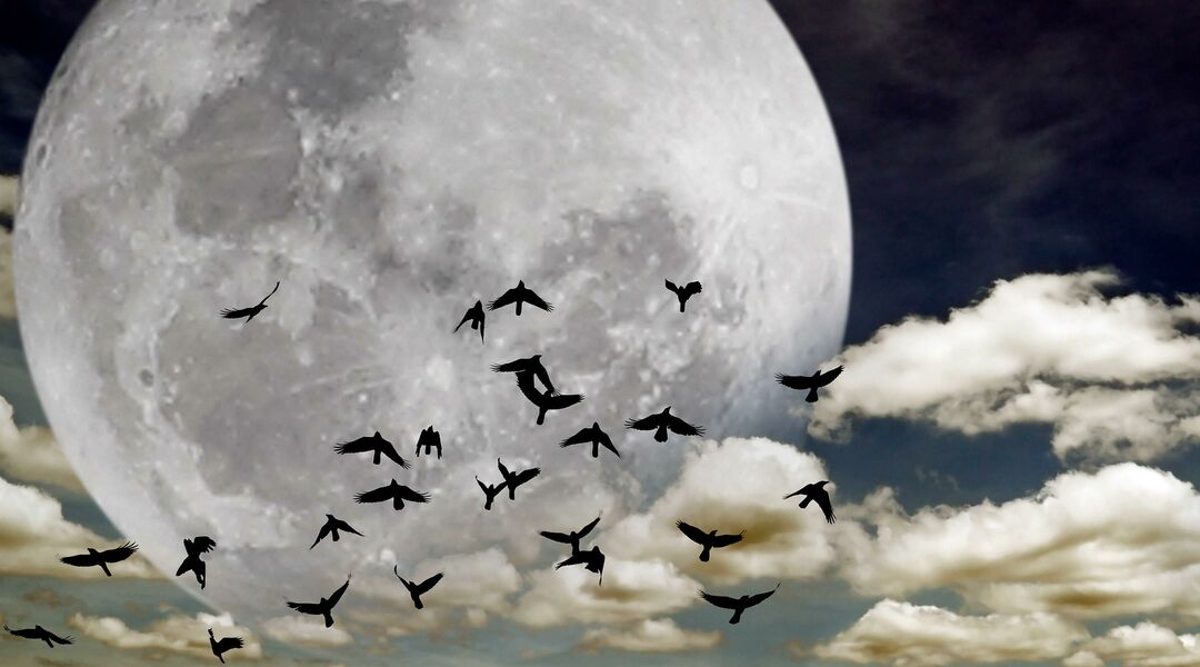 ominous full moon with birds flying over representing fertility superstitions
