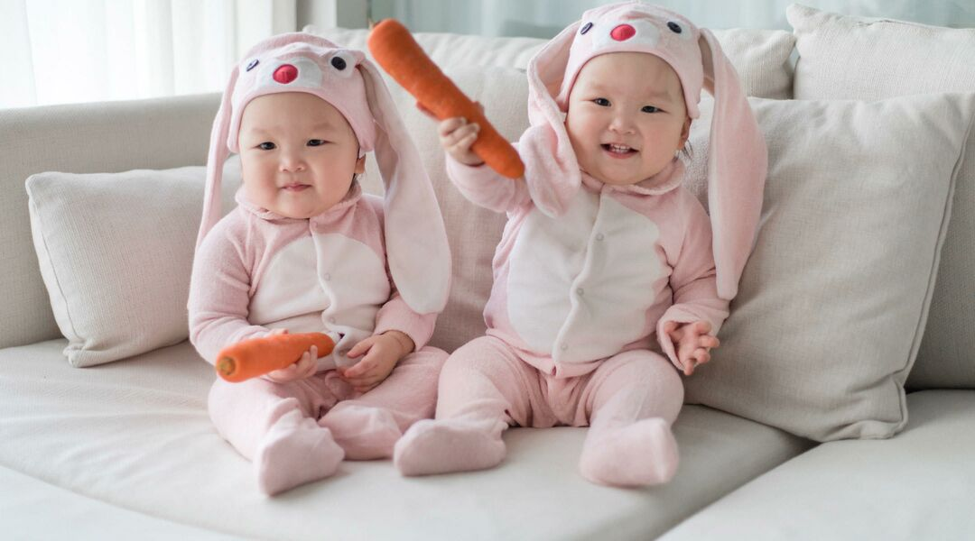 Twin Halloween Costumes Pink Bunnies with Carrots  sc 1 st  The Bump : good twin halloween costumes  - Germanpascual.Com