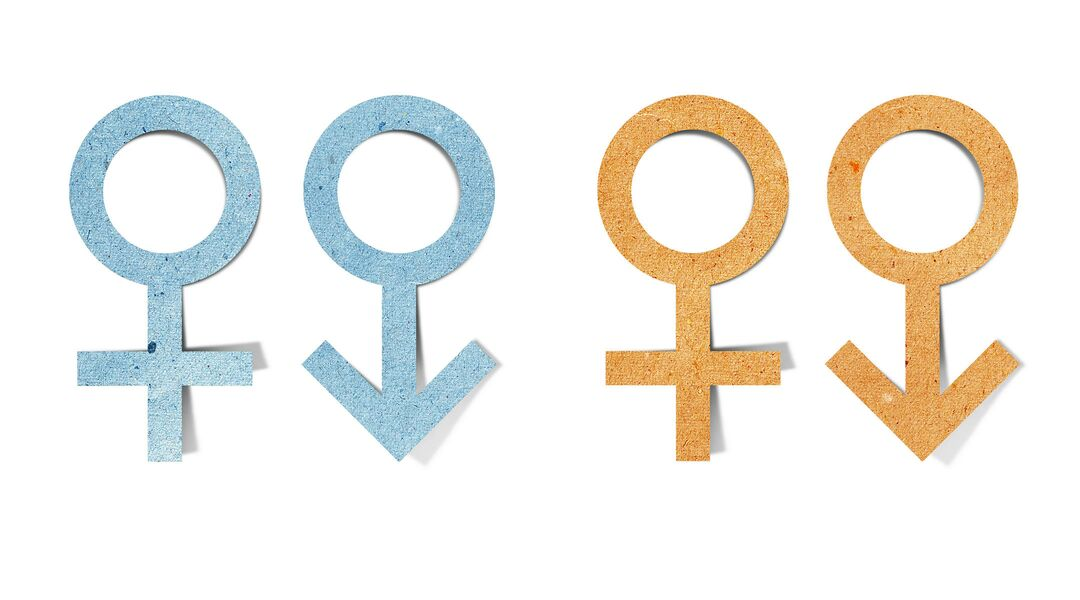 cutouts of the male/female gender symbols