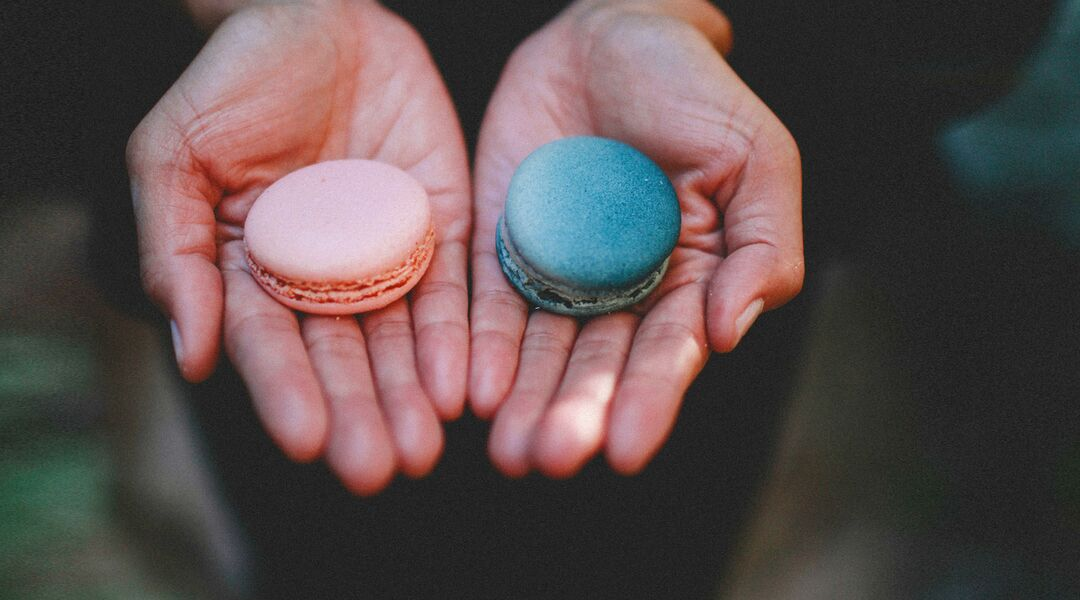 baby gender reveal hands holding blue and pink macaronshow-to-find-baby-gender