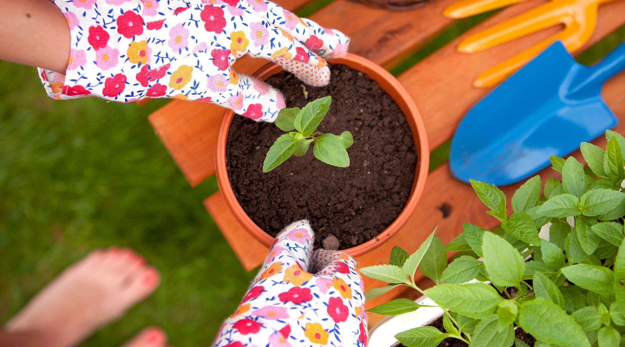Big (and Small) Ways to Go Green: Real Mom Tips