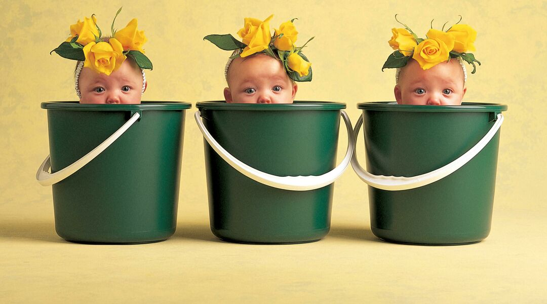 Photographer Anne Geddes captures infants in plant costumes, and contrasts them with their grown-up selves.