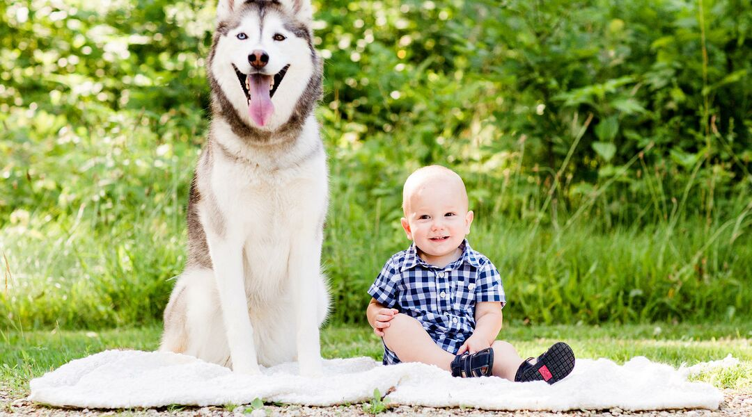 cute baby and puppy photos for national puppy day