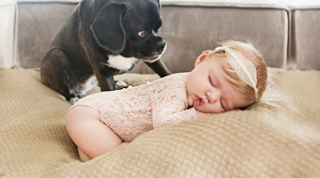 Sleeping girl with cute puppy