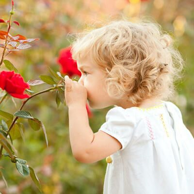 Autism May Be Diagnosed Early by Sense of Smell