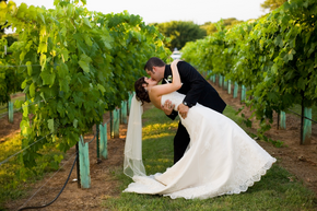 Texas Winery Wedding
